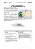 Biologie_neu, Sekundarstufe I, Pflanzen, Samenpflanzen, Bedeutung der Samenpflanzen für den Menschen und die Natur