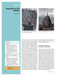 Kunst_neu, Sekundarstufe I, Flächiges Gestalten, Zeichnen, Malen, Einsatz verschiedener Werkmittel, Kreide, Surrealismus, René Magritte, Stilmittel, Gegensatz, Grafik, Erfahrungen, Interpretation, Mischtechnik