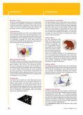 Kunst_neu, Primarstufe, Körperhaft-räumliches Gestalten, Gestaltungsaktionen, Experimentieren, Drucken, T-Shirts, Farbe, Landschaften, Porträts, Verfremdung, Spuren, Relief, Lappen, Struktur, Fingerabdruck, Natur