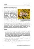Biologie_neu, Sekundarstufe II, Stoffwechsel, Genetik, Stoffwechsel des Menschen, Erbkrankheiten, Arten von Mutationen, Genmutationen, Mensch, Uhr, Bedeutung, Zeit, automatisch, Insekt, Pflanze, Stress, Reaktion, Licht, Fotosynthese