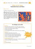 Kunst_neu, Primarstufe, Flächiges Gestalten, Malen, Farbmischung, Farbkontraste, Farbwirkung, Deckfarbkasten/ Farben benennen und unterscheiden, Primär-, Sekundär- und Tertiärfarben, Formen bei Matisse, Scherenschnitte von Matisse, Farben bei Matisse, Farbkontraste erzeugen, Künstler Steckbrief, Steckbrief erstellen, Form-Farb-Paare finden, Beobachtungsbogen Lehrer, Beobachtungsbogen Schüler