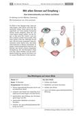 Biologie_neu, Sekundarstufe I, Der Mensch, Sinnesorgane, Das Auge, Unterscheidung und Funktion der Sinnesorgane, Sehen, Hören, Funktion, Vorteil, Anatomie, Menschen