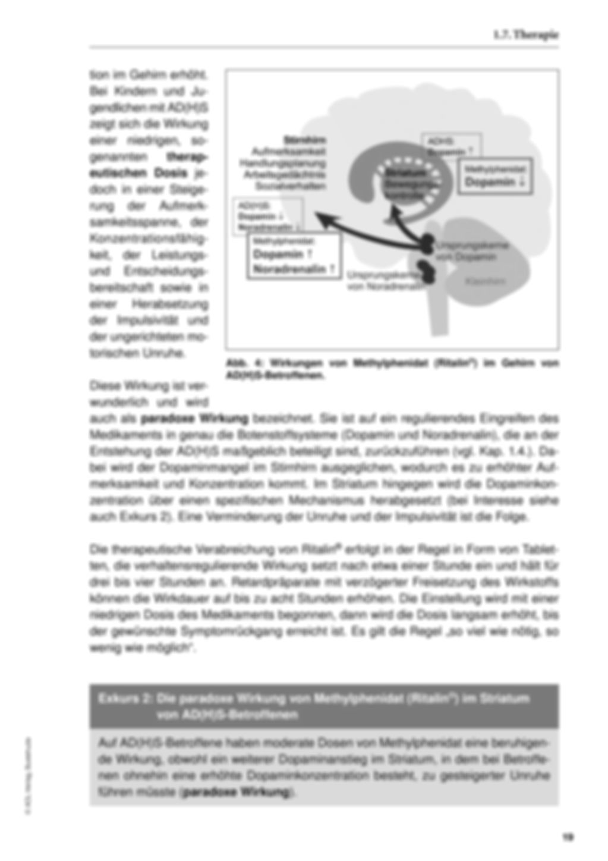 Einführung mit Zusatzmaterial Preview 21
