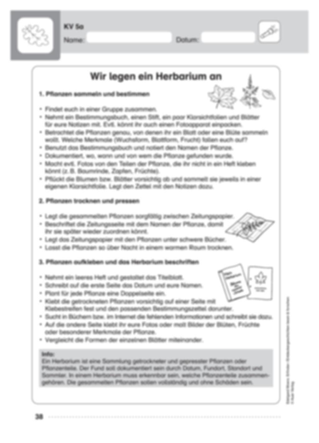 Alexander von Humboldt Preview 6
